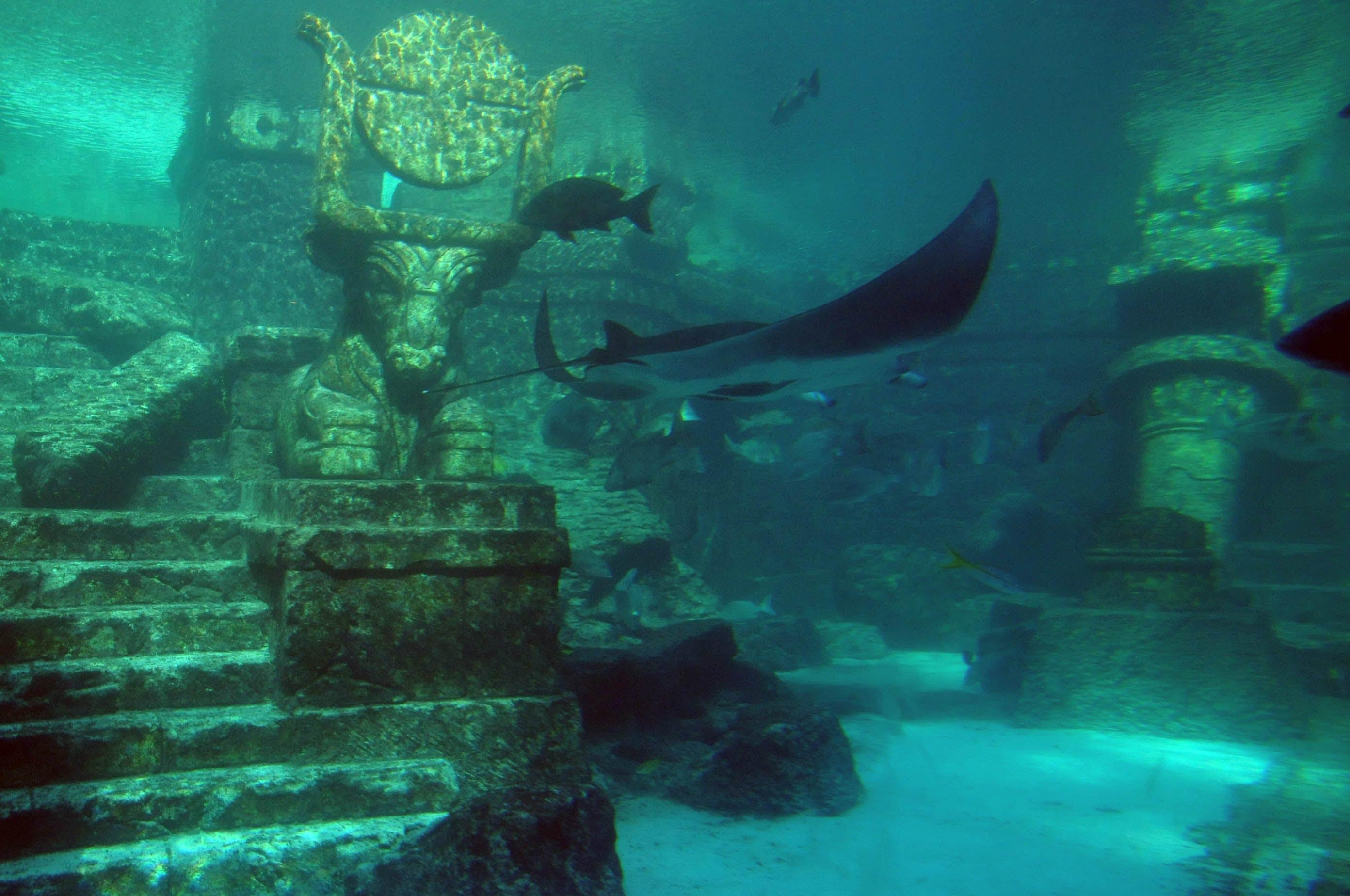 alien races under the atlantic ocean meditation bridge by sam